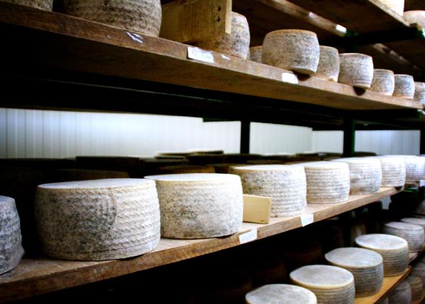Chacinas, embutidos y quesos - Ostreasur